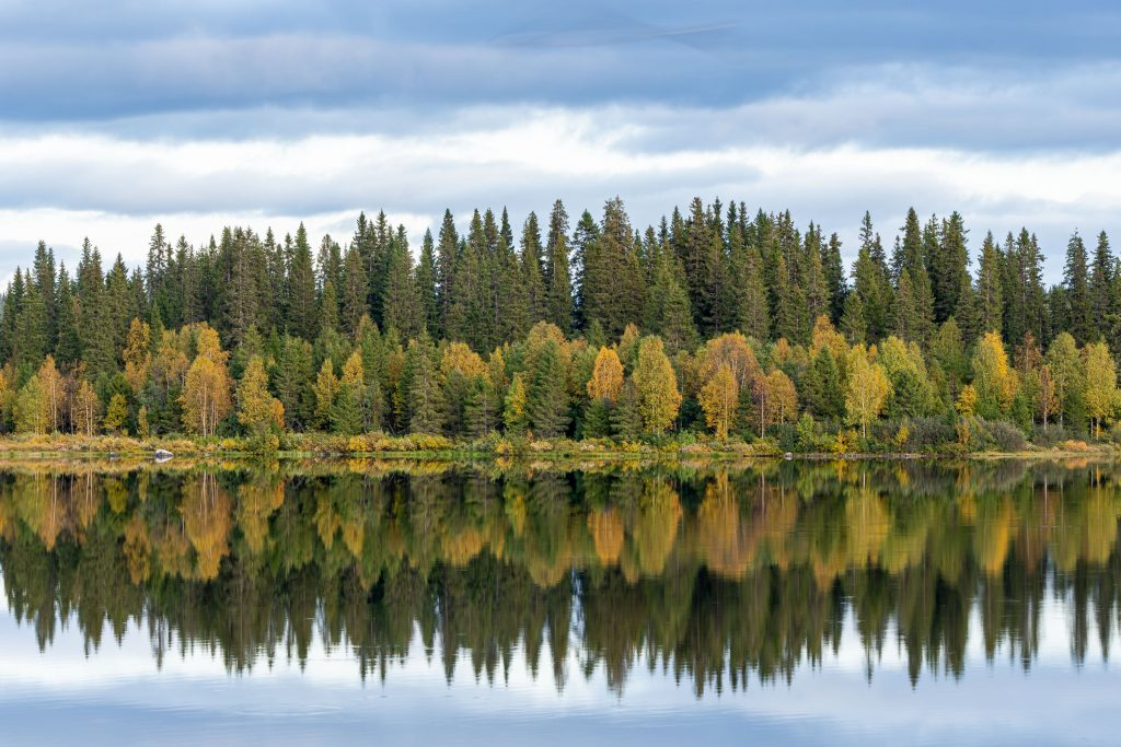 zweden herfst
