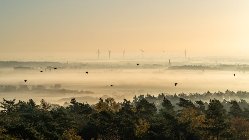 Een adembenemend uitzicht vanaf de uitkijktoren op de Hulzenberg